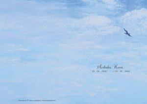 Salmehefte 133 Himmelblå