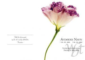 Salmehefte 832 Enslig blomst